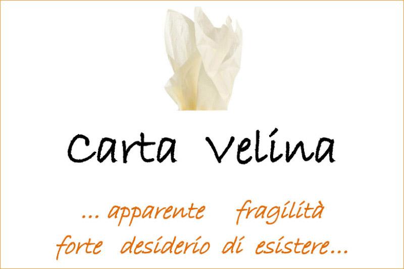 Carta Velina - ... apparente fragilità forte desiderio d esistere ...